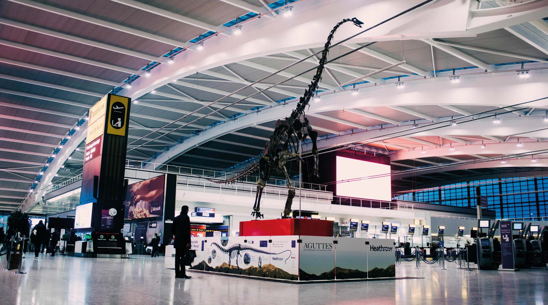 Skinny Diplodocus